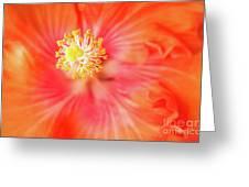 Sacred Song Greeting Card