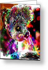 Sad Dog Greeting Card by James Thomas
