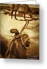 Saddle Greeting Card