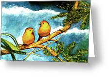 Saffron Finch Birds #88 Greeting Card