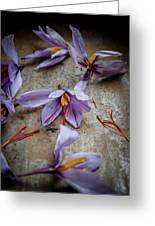 Saffron Flower Greeting Card