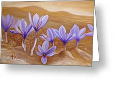 Saffron Flowers Greeting Card