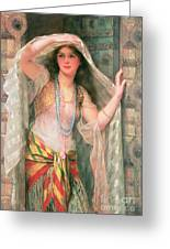 Safie Greeting Card by William Clark Wontner