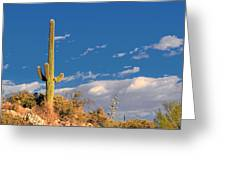 Saguaro Cactus - Symbol Of The American West Greeting Card