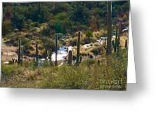 Saguaro Creek Greeting Card