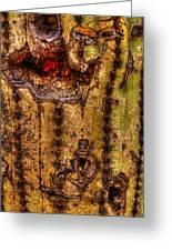 Saguaro Detail No. 18 Greeting Card