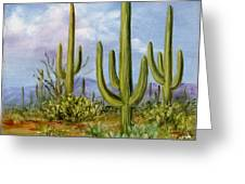 Saguaro Scene 1 Greeting Card