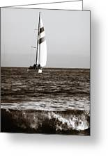 Sail Boat Coming Ashore 2 Greeting Card