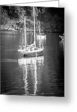 Sail Boat Yaht Parked At Harbor Bay Greeting Card
