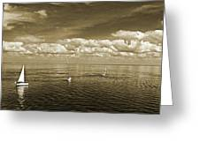 Sail Boats 1 Greeting Card