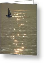 Sailboat At Catalina Greeting Card