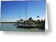 Sailboat At Royal Harbor Greeting Card