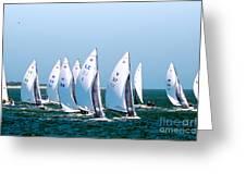 Sailboat Championship Regatta Greeting Card