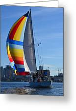 Sailboat In Seattle Greeting Card