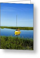 Sailboat In Cape Cod Bay Greeting Card