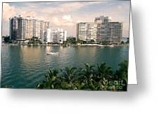 Sailboat In Miami Beach Florida Greeting Card