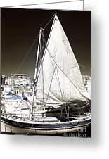 Sailboat In Vieux Port Greeting Card by John Rizzuto