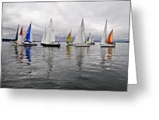 Sailboat Race Seattle Greeting Card