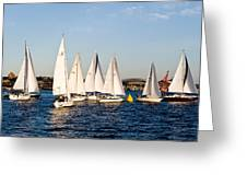 Sailboat Racing Greeting Card