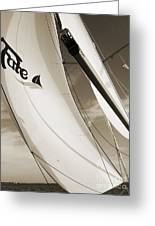 Sailboat Sails And Spinnaker Fate Beneteau 49 Charelston Sc Greeting Card