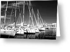 Sailboats Docked Greeting Card