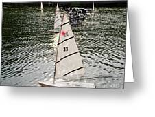 Sailboats In Central Park Greeting Card