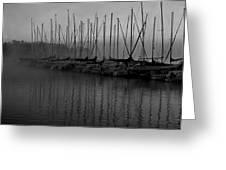 Sailboats In Harbor 2 Greeting Card