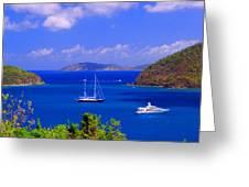 Sailboats In St. John's Greeting Card