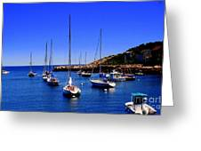 Sailboats Moored In Rockport Harbour. Greeting Card