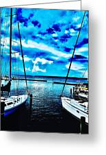 Sailboats Watching Weather Greeting Card