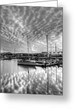 Sailer's Delight Black And White Greeting Card