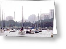 Sailing Amongst Friends Greeting Card by Jackie Bodnar