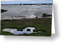 Sailing At Low Tide Greeting Card