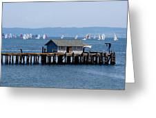 Sailing At Penn Cove Greeting Card