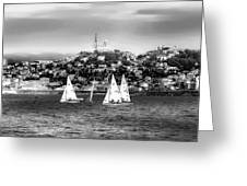 Sailing Boat  Black-and-white Greeting Card