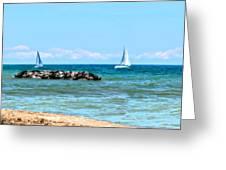 Sailing Days On Lake Erie Panorama Greeting Card by Randy Steele
