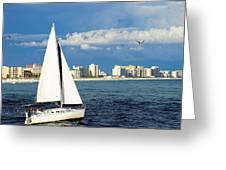 Sailing Destin, Fl Greeting Card