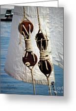 Sailing Dories 2 Greeting Card