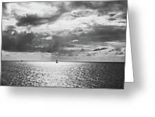 Sailing Dreams Black And White Greeting Card