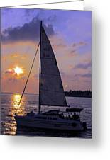 Sailing Home Sunset In Key West Greeting Card