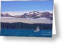 Sailing In Alaska Greeting Card