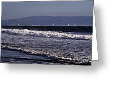 Sailing In Santa Monica Greeting Card