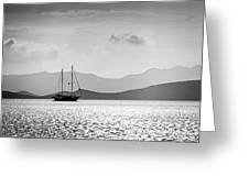 Sailing In The Sunset Greeting Card