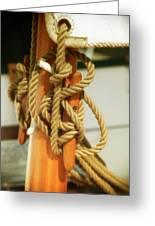Sailing Knot Greeting Card