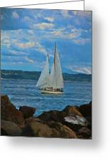 Sailing On A Summer Day Greeting Card