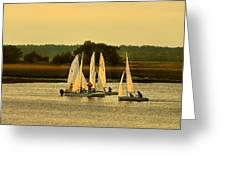 Sailing Practice Greeting Card