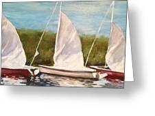 Sailing School Greeting Card