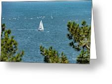 Sailing The Sea Of Marmara Greeting Card