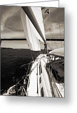 Sailing Under The Arthur Ravenel Jr. Bridge In Charleston Sc Greeting Card