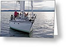 Sailing Up Greeting Card